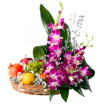 Emotion's Decoration Flower and Fruit Collection